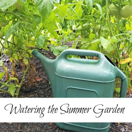 How much water does your garden need?